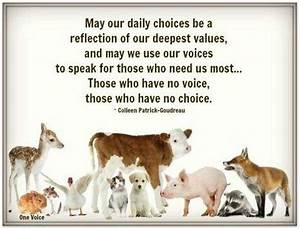 Quotes About Compassion For Animals. QuotesGram