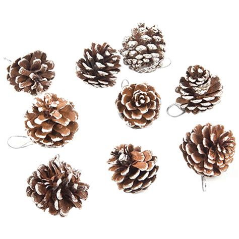 tiny pine cones for crafts 9 pcs lot real natural small pine cones for christmas craft decorations white paint vba12 p in