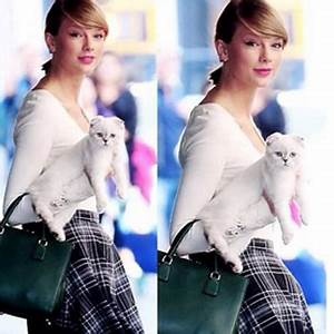 We Give Taylor Swift and Her Cat a Feline-Friendly Guide ...