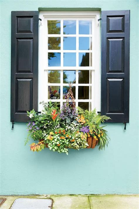 lovely window boxes  beautify  house exterior