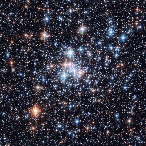 Do You Know Your Nearest Star Cluster?