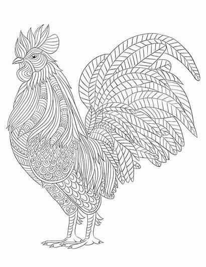 Coloring Pages Farm Animal Mandala Printable Animals