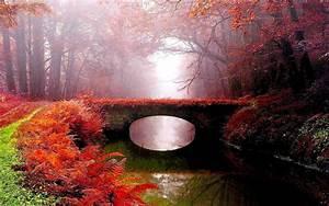Fog, Park, Bridge, Autumn, River, Wallpapers, Hd, Desktop, And, Mobile, Backgrounds