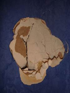 Reboucher Trou Mur Placo : reboucher un trou dans un mur en placo avec le vide derriere ~ Melissatoandfro.com Idées de Décoration