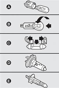 Fiat Linea  2007  U2013 2013   U2013 Bulbs Specification