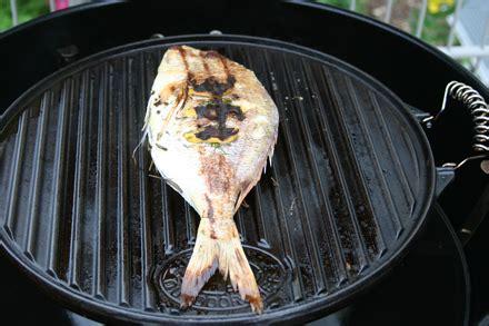 gas grillen für anfänger dorade grillen gasgrill dorade grillen so geht 39 s richtig dorade grillen rezept kleinster