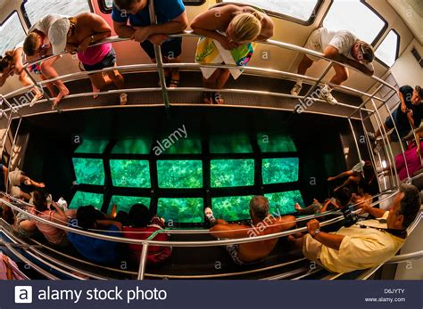 Glass Bottom Boat Tours Key Largo by Glass Bottom Boat Pennek Coral Reef State Park