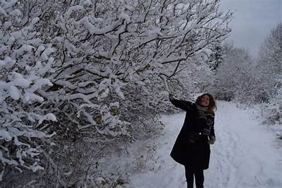 Winter Wonderland Animal Snow Rosan Enjoying Right