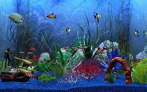 Aquarium HD 1080p Wallpaper