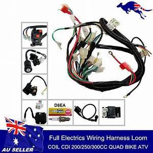 250cc Quad Electrics 150 200cc Zongshen Lifan Ducar Razor Cdi Coil Wire Harness