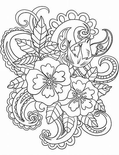 Coloring Paisley Adults Pattern Pages Flowers Patterns