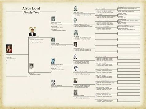 Powerpoint Genealogy Template by Family Tree Free Template Editable 25 Unique Family Tree