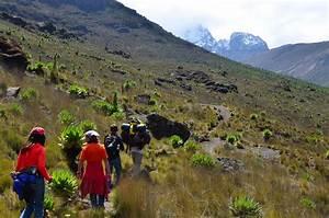 Climbing Mount Kenya | Kenya Safari Holidays | Safari in Kenya
