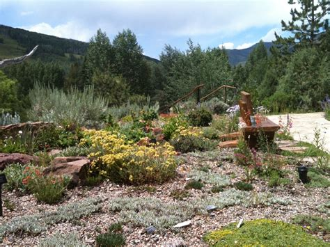 gardens at vail betty ford alpine gardens vail plant select