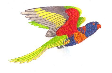 rainbow lori clipart clipground