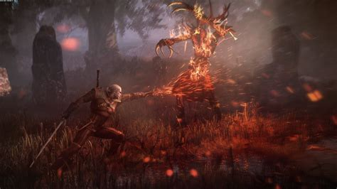 The Witcher 3 Wild Hunt Wallpapers, Pictures, Images