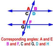 alternate angles     size