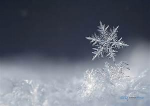 Казань посетил первый снегопад - Mega Obzor