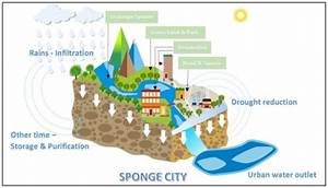 The Opportunities And Challenges Of The Sponge City