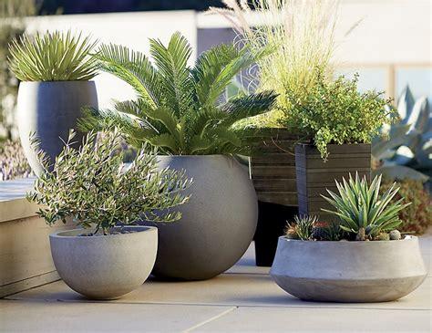 vasi per alberi 1001 idee per piccoli giardini suggerimenti da copiare