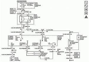 12  Vx Ls1 Engine Wiring Diagram