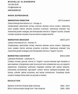 sample marketing director resume cv template free With cv template for marketing job