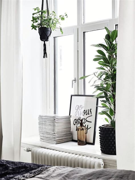 Window Sill Decor by Best 25 Window Ledge Decor Ideas On Plant