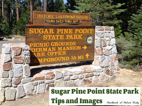 There's a lot of outdoor activities to enjoy in the area including fishing. Ed Z'berg Sugar Pine Point State Park - Tips and Images