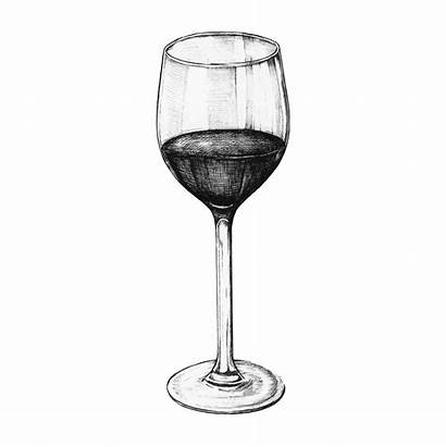Wine Glass Drawn Hand Vector Drawing Draw