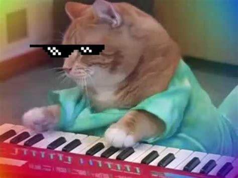 Cat Playing Piano Meme - mlg piano cat great banter 10 10 funny