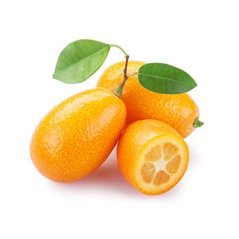 cuisine huile essentielle acheter kumquat fruits exotiques direct de l 39 agriculteur