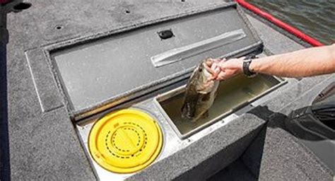 Fishing Boat Live Well by Keeping Heat Stressed Bass Alive Fishing Boatus