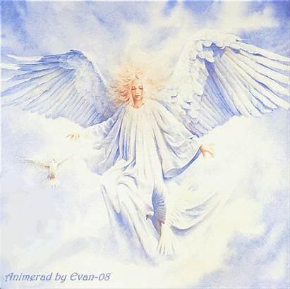 Angels Angel Animeringar Flying Alderaan Grafik