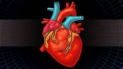Heart Cuore Bionico Primo Pumping Beating Ecco