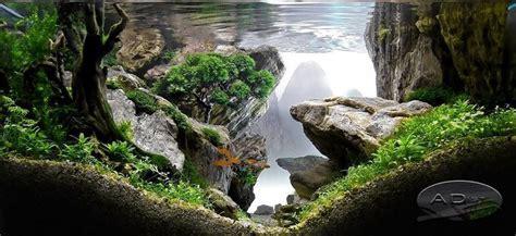 freshwater aquascaping ideas 100 aquascape ideas aquariums plants and fish tanks