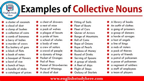 examples  collective nouns english study