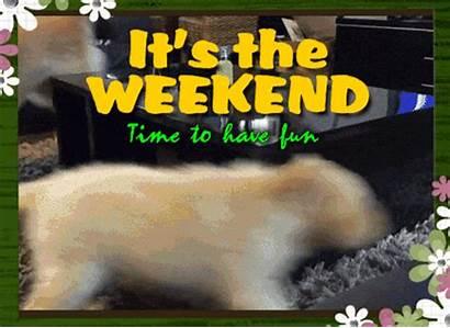 Weekend Fun Enjoy Doggies Greetings Ecards Ecard