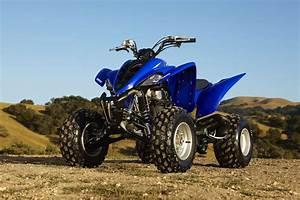 Download Yamaha Raptor Repair Manual 50 80 90 250 350 660