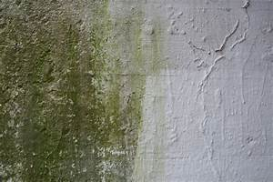 Feuchtigkeit Im Mauerwerk : feuchtigkeit im keller top tipps gegen feuchte kellerw nde ~ Michelbontemps.com Haus und Dekorationen
