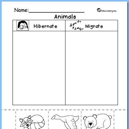 hibernation migration animal sorting worksheet k k learning preschool worksheets