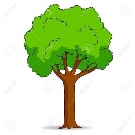 albero clipart deciduous tree clipart clipground