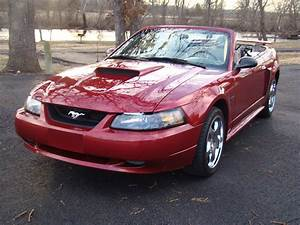 2003 Ford Mustang | Car Wallpaper