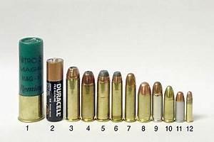 Douille 36 Mm Feu Vert : quelques munitions courantes d 39 armes de poings 1 calibre 12 d 39 arme de chasse canon lisse 2 ~ Medecine-chirurgie-esthetiques.com Avis de Voitures