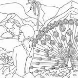 Peacock Coloring sketch template