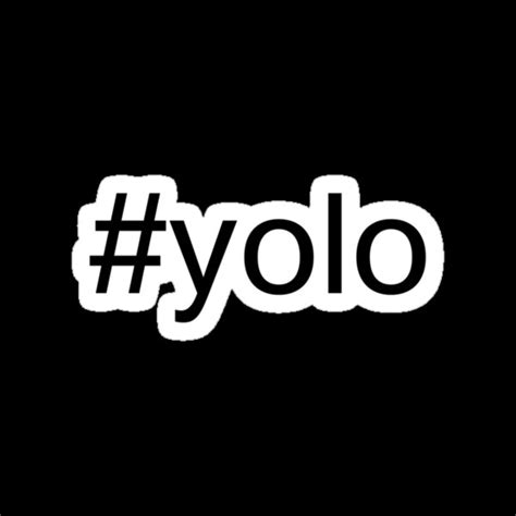 "Yolo is an acronym for you only live once. ""#yolo"" Stickers by tailurr 