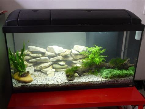 prix aquarium 96l
