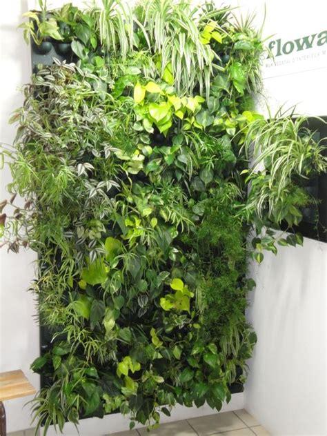 Best Vertical Garden System by 14 Best Flowall Indoor Vertical Garden System Images On