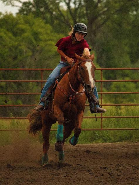 fragile horses legs stomach why horse