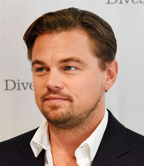 Leonardo Dicaprio Has A Swedish Lookalike