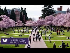 University of Washington Seattle - Campus Tour - YouTube